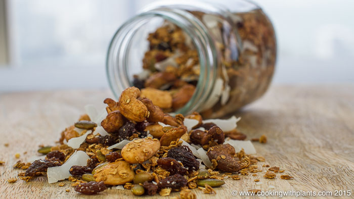 homemade vegan granola cereal