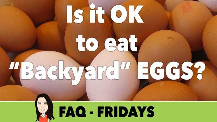 vegans eggs