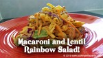 Macaroni and Lentil Rainbow Salad
